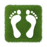 Traço de pé humano na grama verde Imagem de Stock