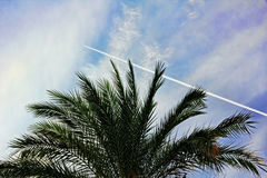 Traço do combustível dos aviões de lutador no céu azul turco Fotos de Stock Royalty Free