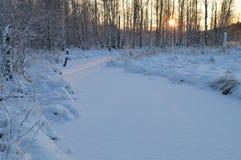 Traços de luz do sol no rio branco da floresta da tampa de neve Fotos de Stock Royalty Free