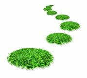Traços de trevo verde Imagens de Stock Royalty Free