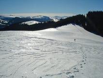 Traços na montanha da neve da vida Imagens de Stock Royalty Free