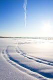 Traços na neve fotos de stock