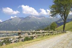 Traînée alpine Image stock