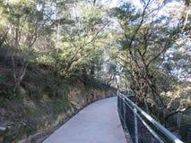 Traînée aux montagnes bleues Sydney NSW images libres de droits
