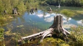 Traînée banff de Fenlands Photo libre de droits