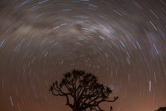 Traînée d'étoile de la Namibie au-dessus de forêt de Quivertree Photographie stock