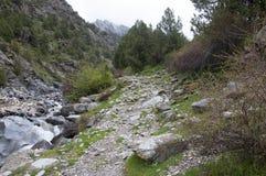 Traînée dans les montagnes Image stock