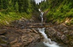 Traînée dans Mt NP plus pluvieux Image libre de droits