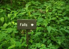 Traînée de cascade dans Great Smoky Mountains Image libre de droits