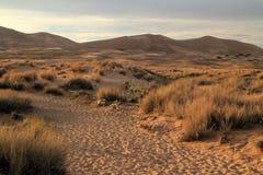 Traînée de dunes de Kelso Photo libre de droits