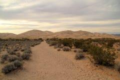 Traînée de dunes de Kelso Images libres de droits