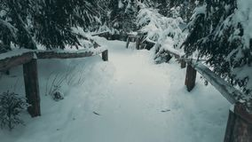 Traînée de forêt de montagne dans la neige Photographie stock