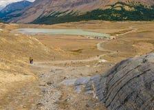 Traînée de glacier d'Athabasca et lac d'écoulement photos libres de droits