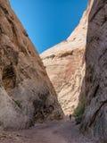 Traînée de gorge de capitol en récif Utah de capitol, Photographie stock