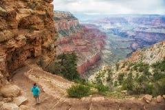 Traînée de Kaibab, jante du sud, canyon grand Image stock