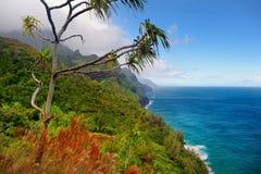 Traînée de Kalalau dans Kauai, Hawaï Image libre de droits