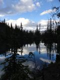 Traînée de lac Grassi, Canmore, Alberta photo libre de droits