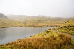 Traînée de lac mountain Image libre de droits