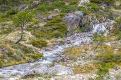 Traînée de Laguna Esmeralda avec la forêt, le courant et la cascade Photos stock