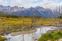 Traînée de Laguna Esmeralda avec la forêt, le courant et les montagnes Images stock