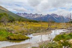 Traînée de Laguna Esmeralda avec la forêt, le courant et les montagnes Photo libre de droits
