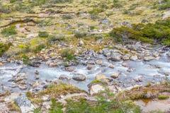Traînée de Laguna Esmeralda avec le courant, la végétation et les roches Images stock