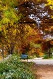 Traînée de marche en parc de ville photographie stock libre de droits