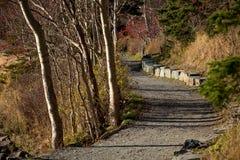 Traînée de marche Groomed en ` de St John s, Terre-Neuve et Labrador images stock
