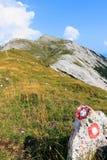 Traînée de montagne avec des pentes d'herbe de verts photographie stock libre de droits