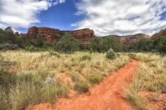 Traînée de montagne d'ours - approche d'Oski dans Sedona, Arizona, Etats-Unis Photo stock