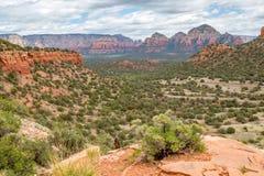 Traînée de montagne d'ours Sedona Arizona Images stock
