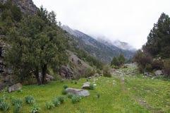 Traînée de montagne en gorge Dugoba Images stock