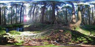Traînée de montagne de 360 réalités virtuelles - nature dans la vue sphérique banque de vidéos
