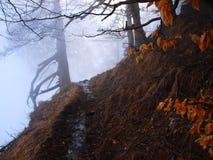 Traînée de montagnes de Bucegi Photo libre de droits