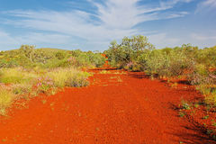 Traînée de saleté menant par l'Australien à l'intérieur Photo libre de droits