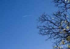 Traînée de vol en automne Images libres de droits