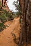 Traînée du jardin du diable dans les voûtes parc national, Utah Photos libres de droits