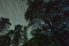 Traînée du nord d'étoile de forêt Photographie stock