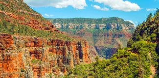 Traînée du nord de Kaibab en parc national de Grand Canyon, Arizona, Etats-Unis d'Amérique image libre de droits