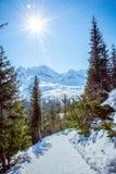 Traînée en montagnes de Tatra Photos libres de droits