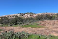 Traînée enchantée de sommet de roche avec la végétation Images libres de droits