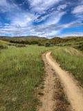 Traînée faisante du vélo de montagne de piste unique collines à Boise, Idaho Photo libre de droits