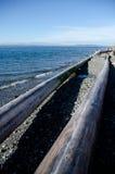 Traînée grande de plage de cadre de rondins près de Richmond WA Photographie stock
