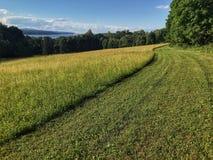 Traînée herbeuse donnant sur Hudson River Photos stock