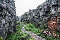 Traînée islandaise en canyon rocheux Photographie stock