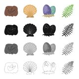 Traînée pétrifiée, coquille préhistorique de mer, oeufs de dinosaure, branche de fougère Dinosaures et icônes préhistoriques de c Image stock
