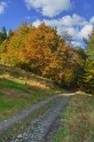 Traînée touristique dans les montagnes dans le beau paysage Photo stock