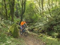 Traînées d'équitation de cycliste de montagne au Pays de Galles Photographie stock libre de droits