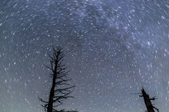 Traînées d'étoile chez Bryce Canyon photographie stock