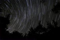 Traînées d'étoile dans la forêt Photo libre de droits
